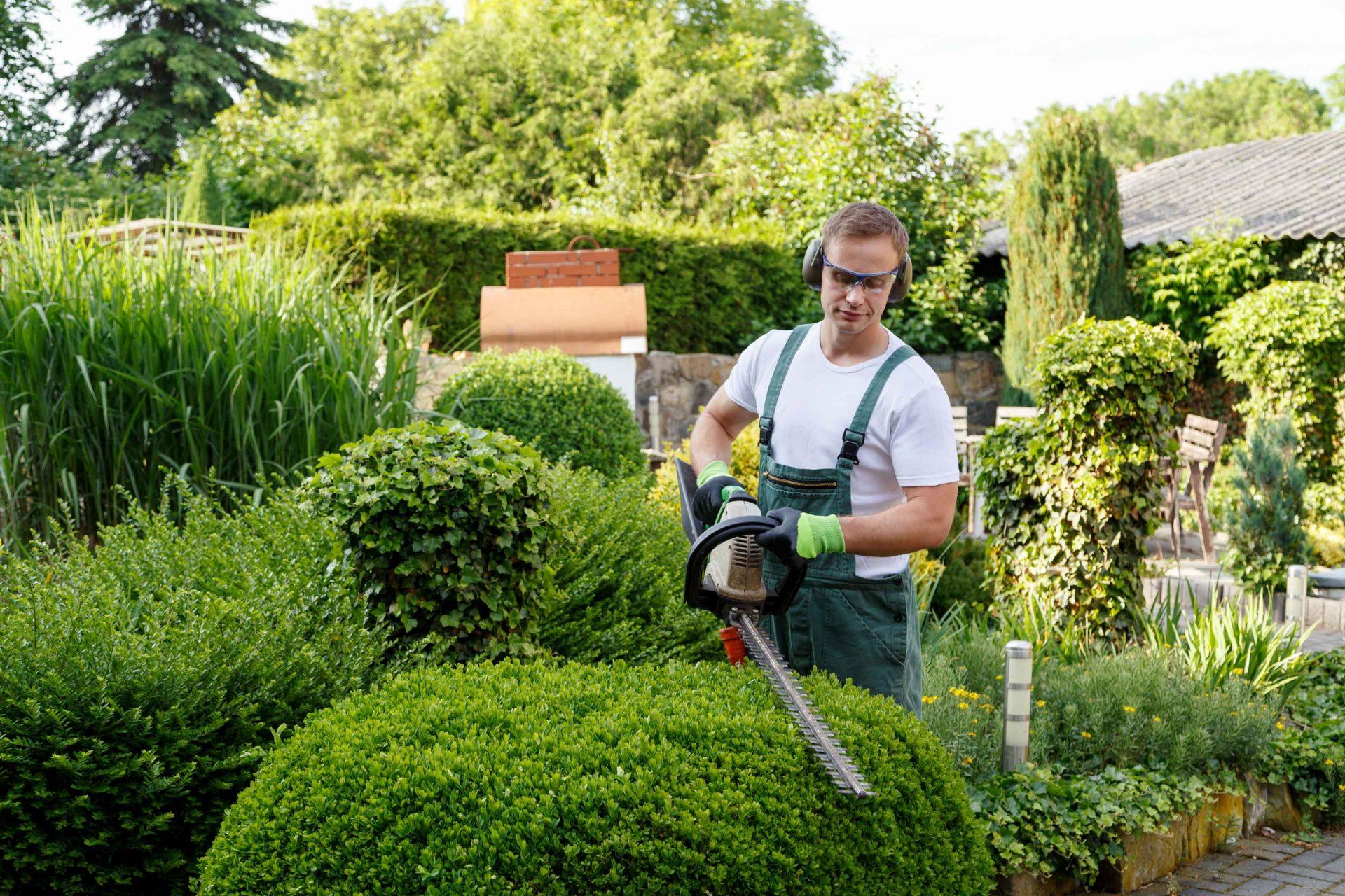 גנן - מה סגנון הגינה שלכם?